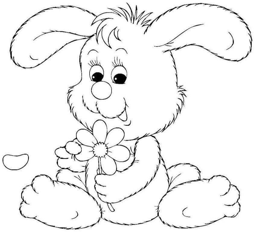 Заяц 1